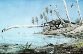 Különös hosszúnyakú dinoszaurusz leletek Villányból