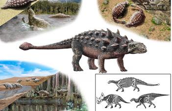 Dinoszauruszok és a szociális távolságtartás