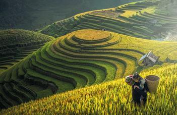 A laoszi hmongok – Ellenálló etnikum